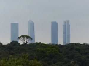 Monte de El Pardo y las Cuatro Torres