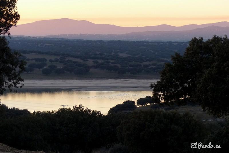 Monte de El Pardo. Pantano